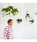 sky planter mediana