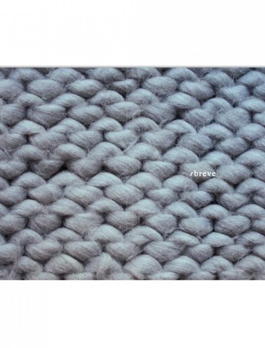 carpeta BREVE 2